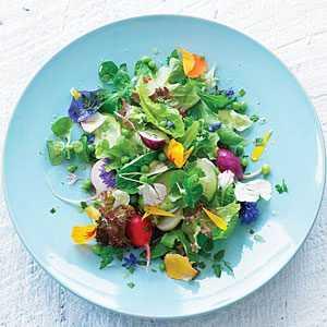bloom-salad-m
