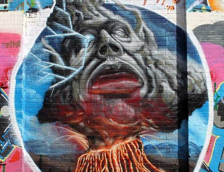 art, Mt. Joy, street art, aerosol paint, Seapuppy